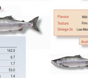 This summer when it comes to salmon: Think Pink