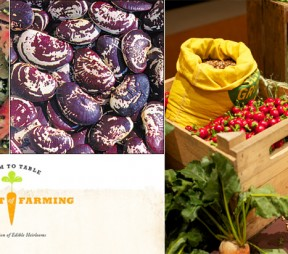 The Art of Farming: Edible Heirlooms to be Auctioned at Sotheby's in NYC