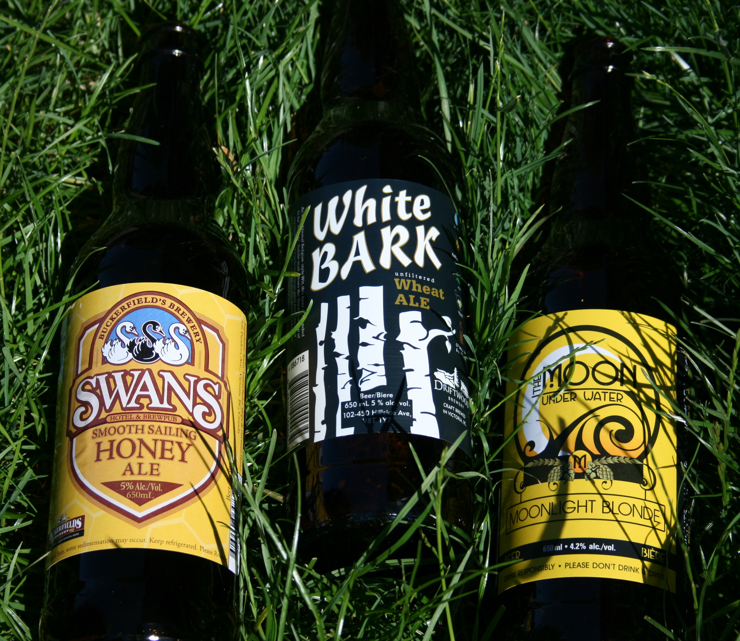 summer beer trio