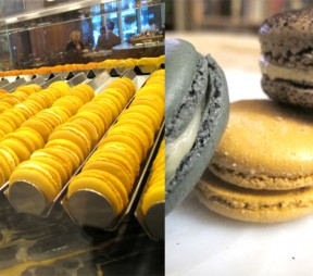 Macaron Madness: Top Five Spots to Indulge in Vancouver
