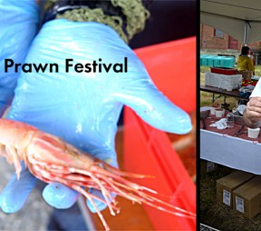 A Report on Victoria's First Annual Spot Prawn Fest