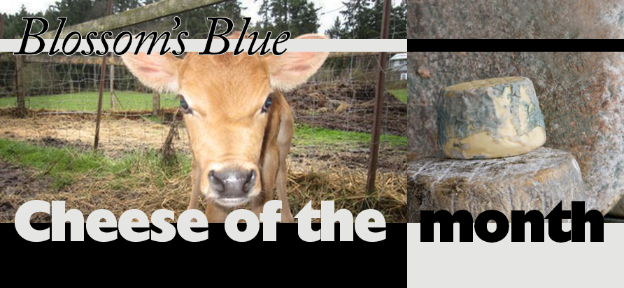 Cheese of the Month June: Blossom's Blue